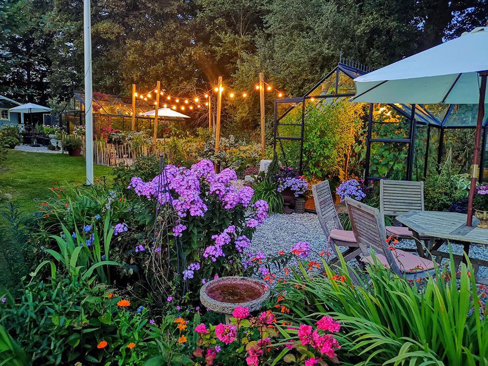 Khu vườn đẹp như cổ tích nhờ sở thích trồng cây và hoa của chàng trai trẻ - Ảnh 21.
