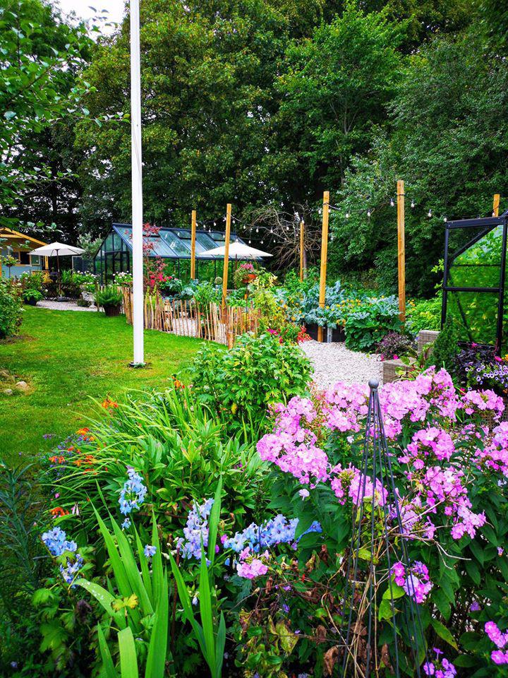 Khu vườn đẹp như cổ tích nhờ sở thích trồng cây và hoa của chàng trai trẻ - Ảnh 7.