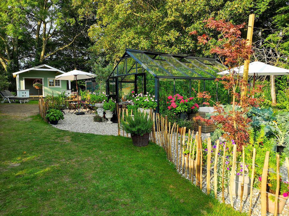 Khu vườn đẹp như cổ tích nhờ sở thích trồng cây và hoa của chàng trai trẻ - Ảnh 13.